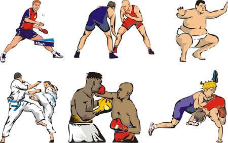 karate fighter: sports figures - indoor - individual