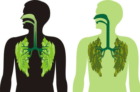 man in air: green lung lobes - a breath of fresh air Illustration