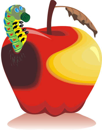 rotten fruit: rotten apple, wormy apple