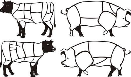 beef & pork diagram - american & british cuts Vector