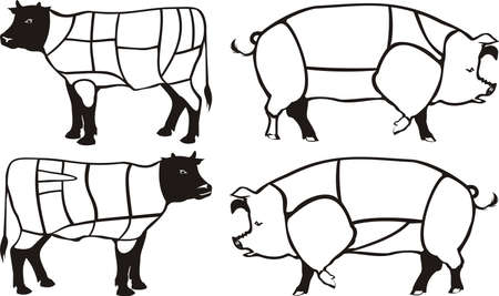 porker: beef & pork diagram - american & british cuts Illustration
