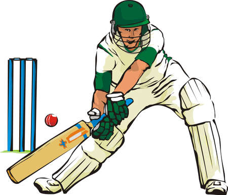 batsman: cricket - bat and bat game