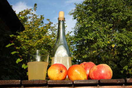 homemade cider - in the garden photo