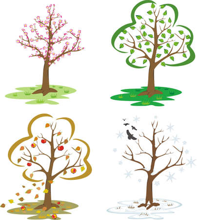 end of summer: four seasons - trees during the seasons of the year  Illustration