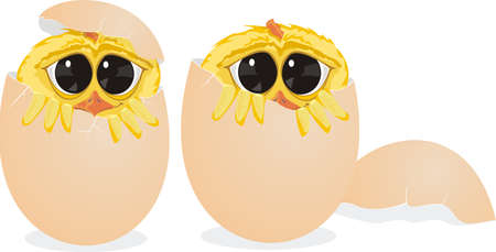 shyness: chick and egg