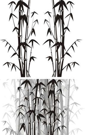 bamboo tree: bamboo  background - black and white