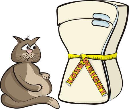 diet food: lose weight - cat glutton