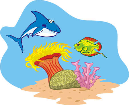 underwater fishes: shark, fish and coral reef Illustration