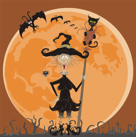 broomstick: witch and full moon