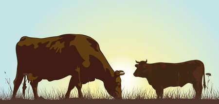 boeufs: pa�tre le b�tail dans la matin�e Illustration