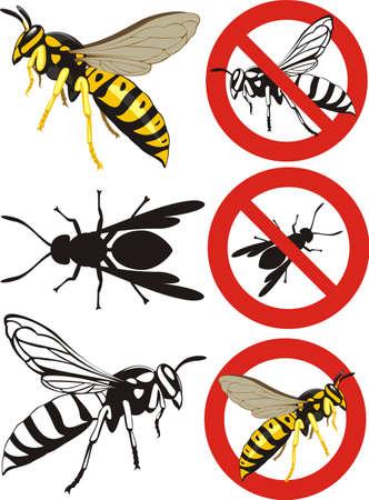 wasp: wasp - warning signs Illustration