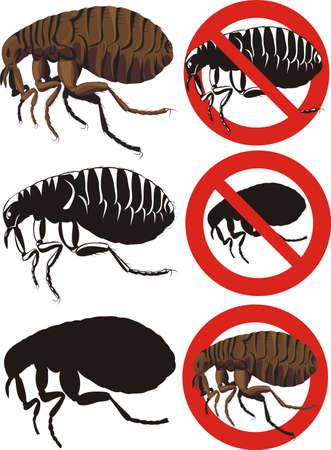 plagas: pulgas - se�ales de advertencia Vectores