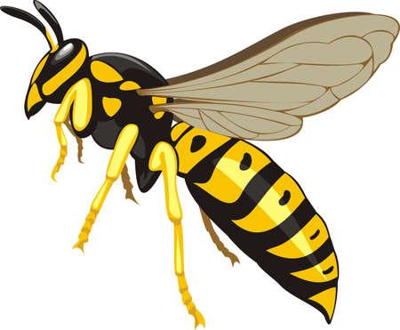 abejas: avispa