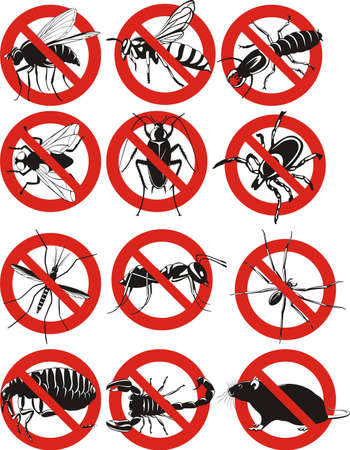 common household pest icon Vector