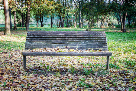 pile of leaves: a wooden bench alone among fallen leaves Stock Photo
