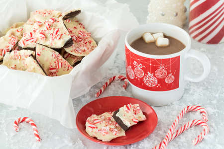 A close up view of a small plate of chocolate peppermint candy cane bark with a large dish of candy cane bark and a cup of hot chocolate.