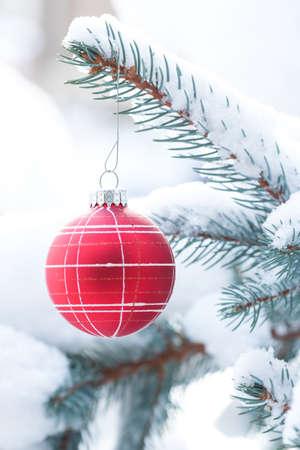 Christmas ornament on snowy branch. Stock fotó