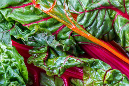 Flat lay close up view of a bunch of fresh rainbow Swiss chard leaves.