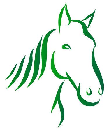 Vector illustration of line-art drawing horse head