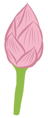 Vector illustration of free hand sketch of water lily Vector