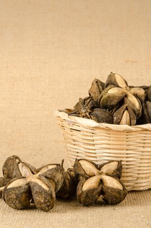 volubilis: Image of sacha inchi peanut seed on brown sack background