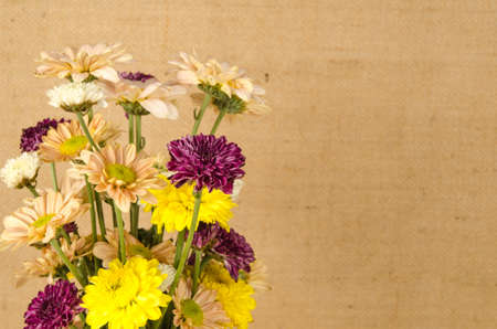 sack background: Image of flowers on brown sack  background