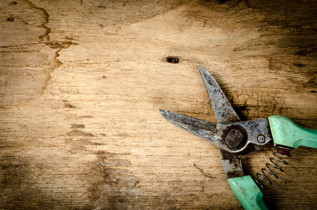 shear: Old pruning shear on wood board Stock Photo