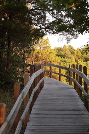 Board walk trail at Ha Ha Tonka State Park in Missouri, USA, at sunset