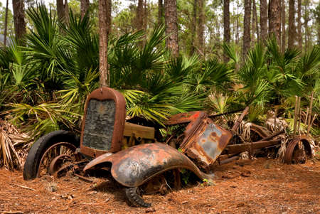 abandoned car: Abandoned old vehicle in a Florida forest Stock Photo