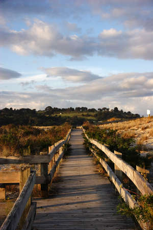 Wooden walkway from the beach in NZ