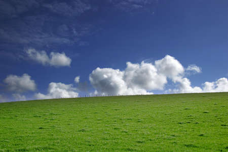 Green grass and blue sky white clouds- landscape