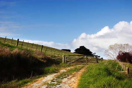 Dirt track to farm gate, New Zealand photo