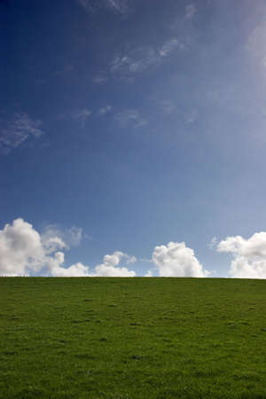 blue sky and green grass, white clouds - portrait Stock Photo