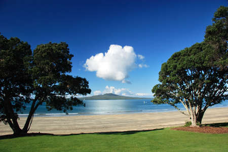Rangitoto island through the trees, Auckland, New Zealand