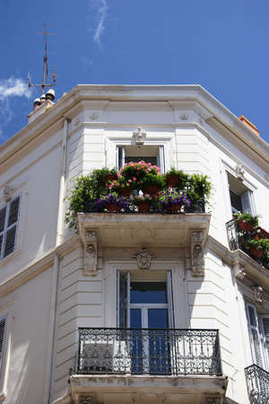 plants on balcony, Antibe, France   Stock Photo