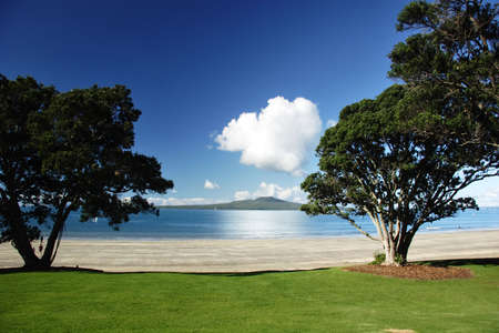Rangitoto though the trees, Auckland, New Zealand