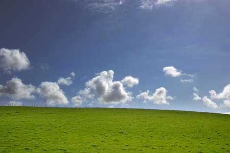 Blue sky and Green grass - landscape Stock Photo - 1229529