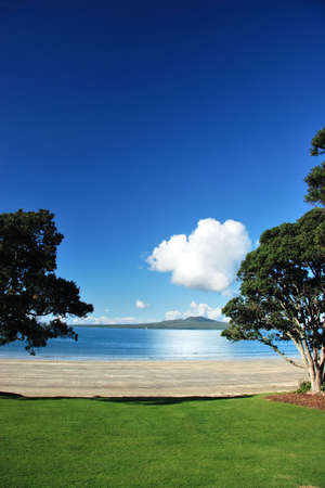 Rangitoto through the pohutakawas, Auckland, New Zealand