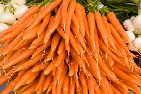 Bunch of Orange Organic Carrots