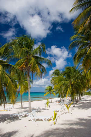 Palms and loungers on a white sand beach, Playa Maria, Cuba