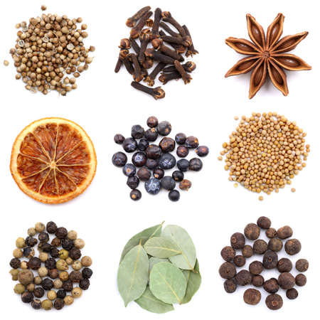 juniper: an assortment of different spices