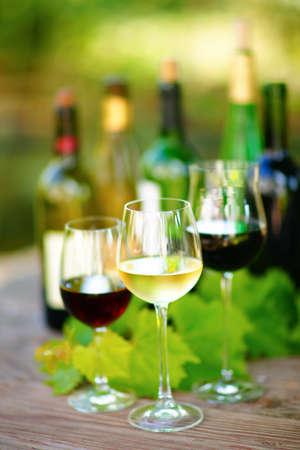 Dégustation de vins Banque d'images - 12463984