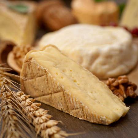 dairy farm: Cheese