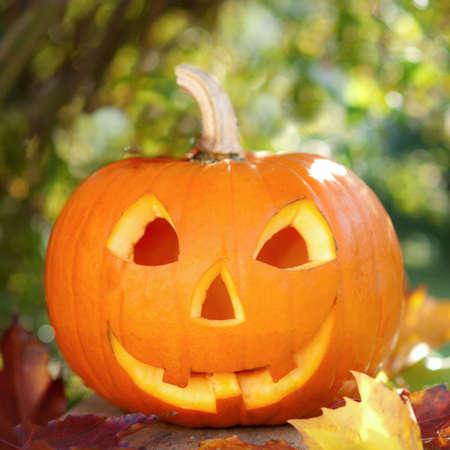horrify: Pumpkin Stock Photo
