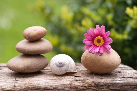 Decorazione di benessere in giardino