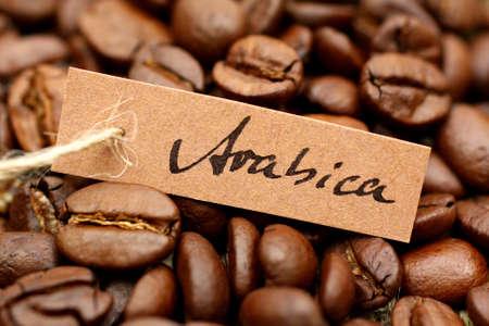 planta de cafe: Caf� Ar�bica