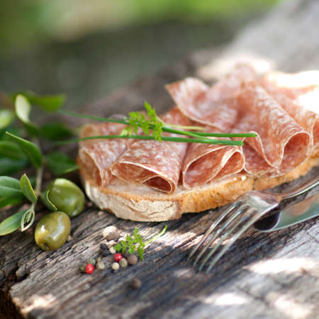 Rustic bread with salami Stock Photo - 13573105