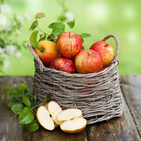 사과: 바구니에 신선한 사과