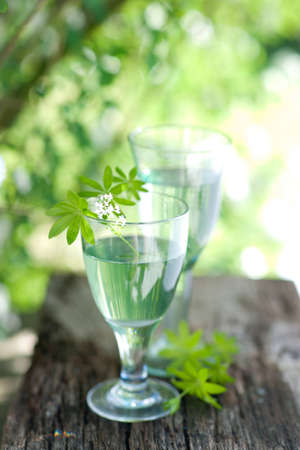 sweet woodruff: Sweet woodruff punch Stock Photo