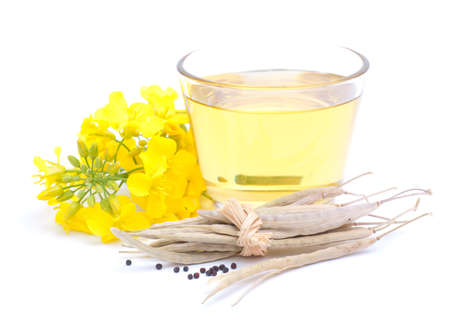 Colza oil on white background Standard-Bild